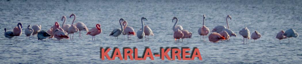 Karla-Krea