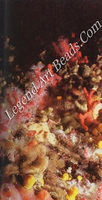 Seabed with Corallium rubrum