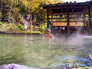 新穂高温泉 (西穂高山麓) 、 高山からバスで90分
