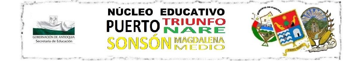 NÚCLEO EDUCATIVO