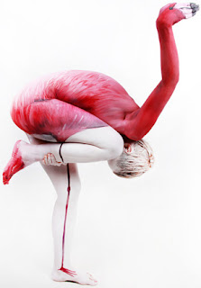 human flamingo optical illusion