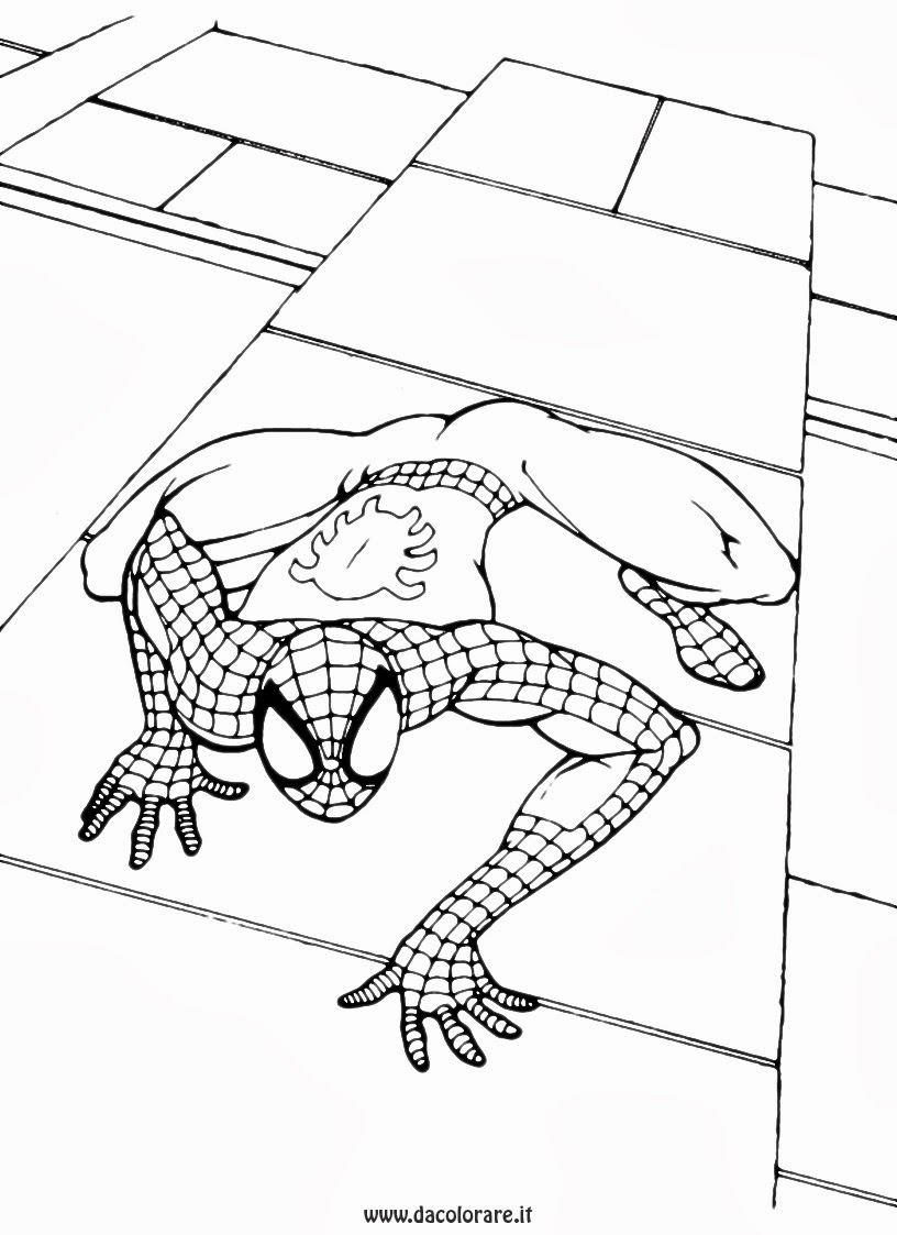 Disegni spiderman da colorare for Disegni da colorare e stampare di spiderman