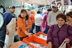Ofrece Delegación Centro-Sur, pescado y marisco a bajo costo