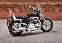 Harley-Davidson 1200 Custom 110th Anniversary Edition (2013) Rear Side