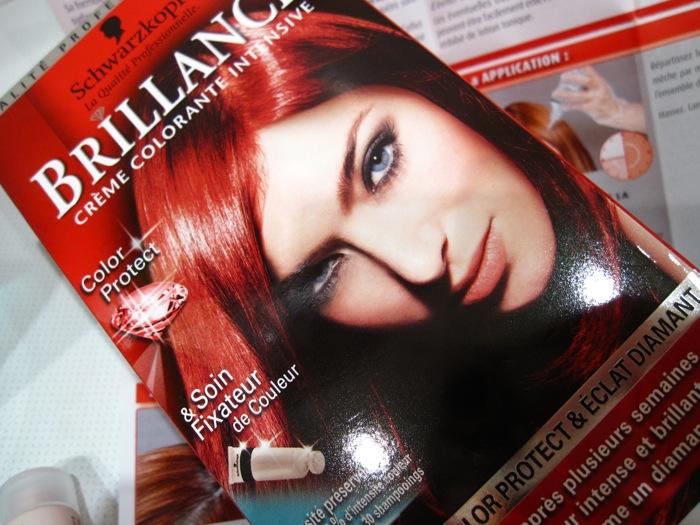 schwarzkopf hair color instructions