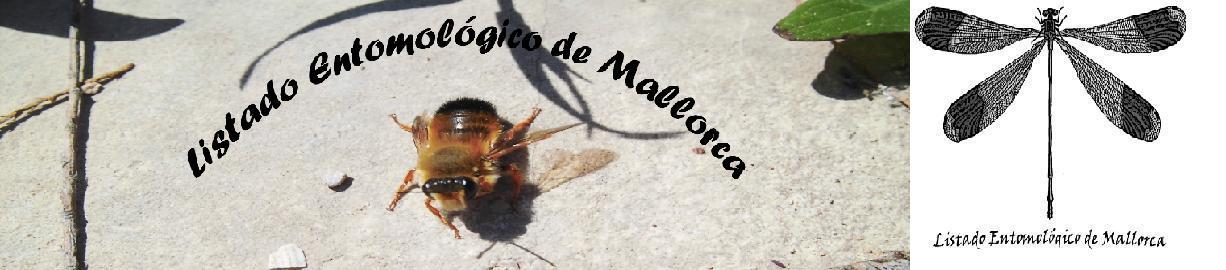 Listado entomológico de Mallorca
