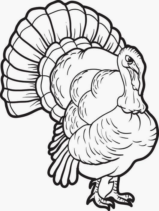 Coloring Pages Turkey Coloring Pages Free and Printable