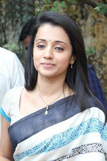 Trisha in Hot Saree