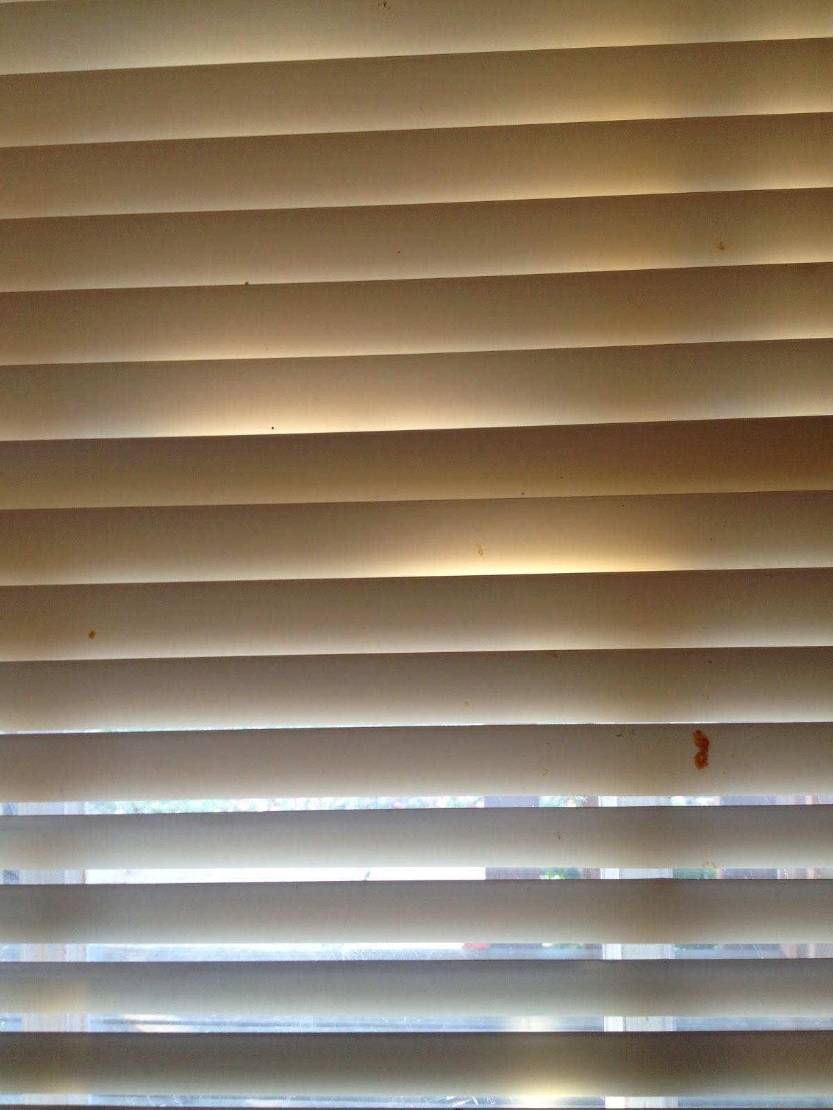 window home bathroom of shower ideas design and shutter unique for pinterest blinds sensational