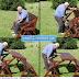 Kursi Lipat di Taman yang Keren