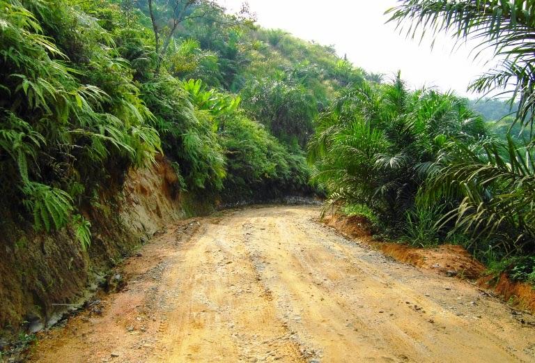 Klasifikasi Tanah www.guntara.com