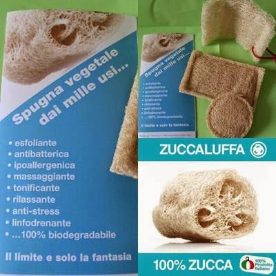 Zuccaluffa