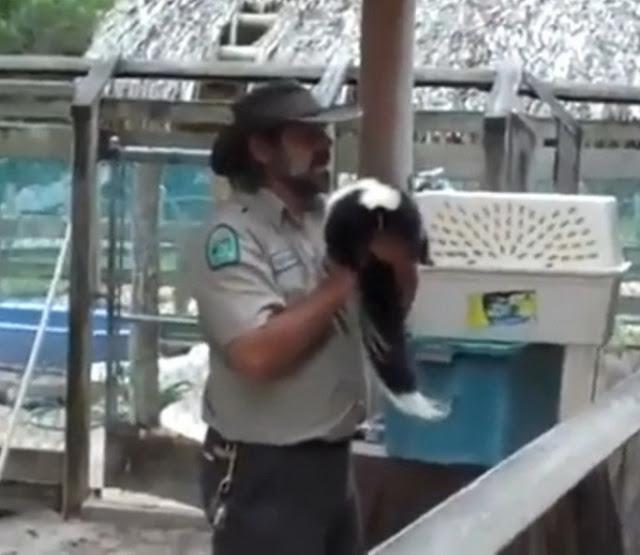 zookeeper pranks