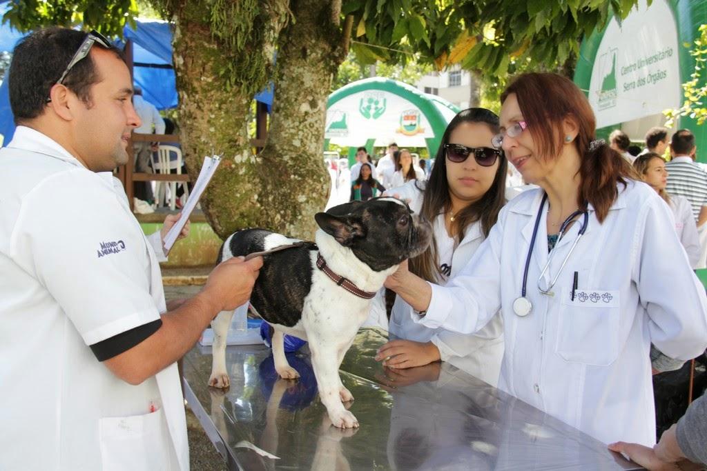 Estudantes do curso de Veterinária do Unifeso avaliam um cão antes da vacinação contra a raiva animal