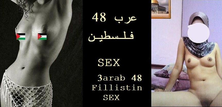 عرب 48 - فلسطين - SEX