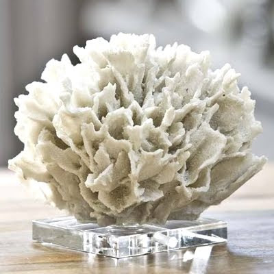 faux white coral