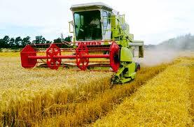 Anim Agro Technology Pertanian Persis