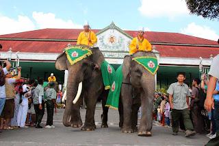 Ribuan Wisatawan Tonton Gajah Grebeg Syawal di Malioboro