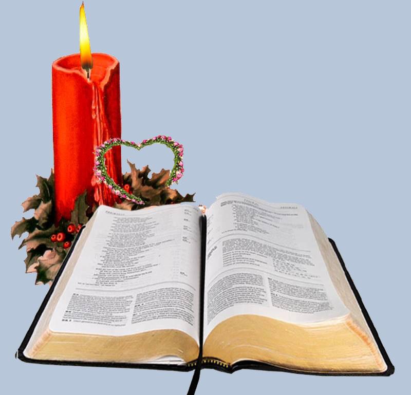 Suy niệm Lời Chúa hằng ngày tuần VII Phục sinh. Lm. Phêrô Phạm Ngọc Lê