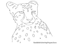 cheetah colouring pages for kids