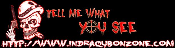 indraqubonz.blogspot.com
