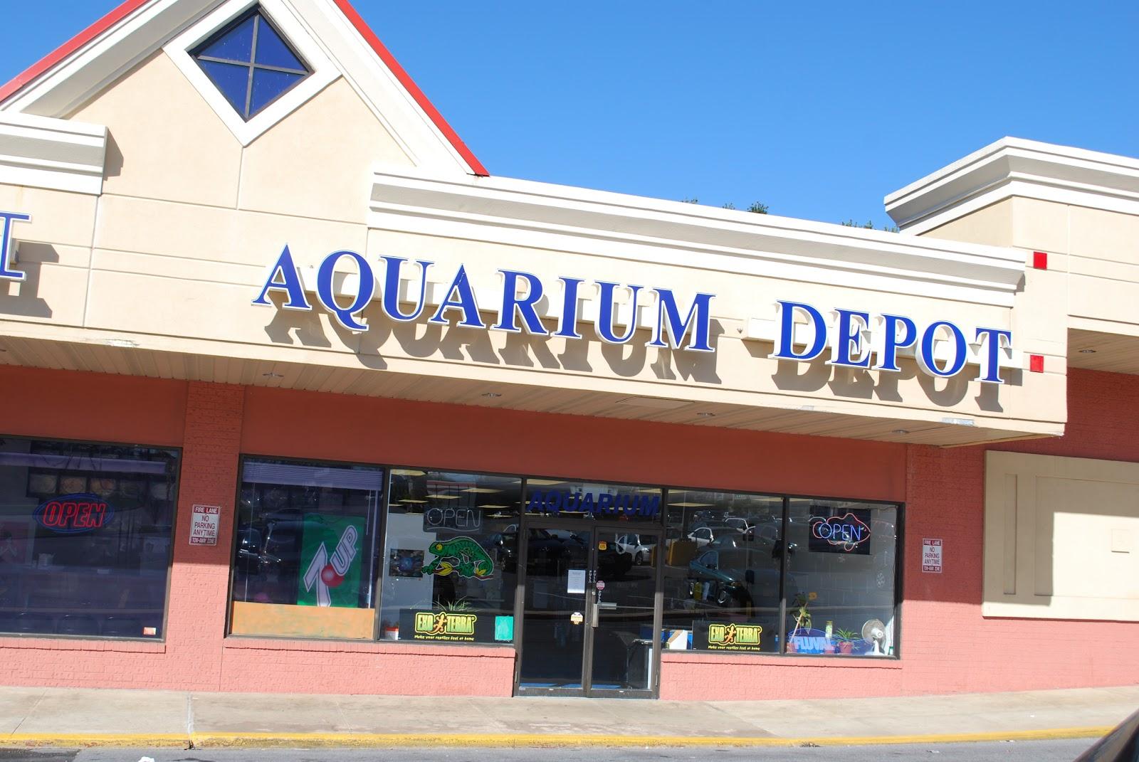 Aquarium depot aquarium depot 40 photos pet stores 8201 for Fish store houston