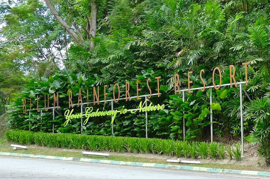 Belum Rainforest Resort