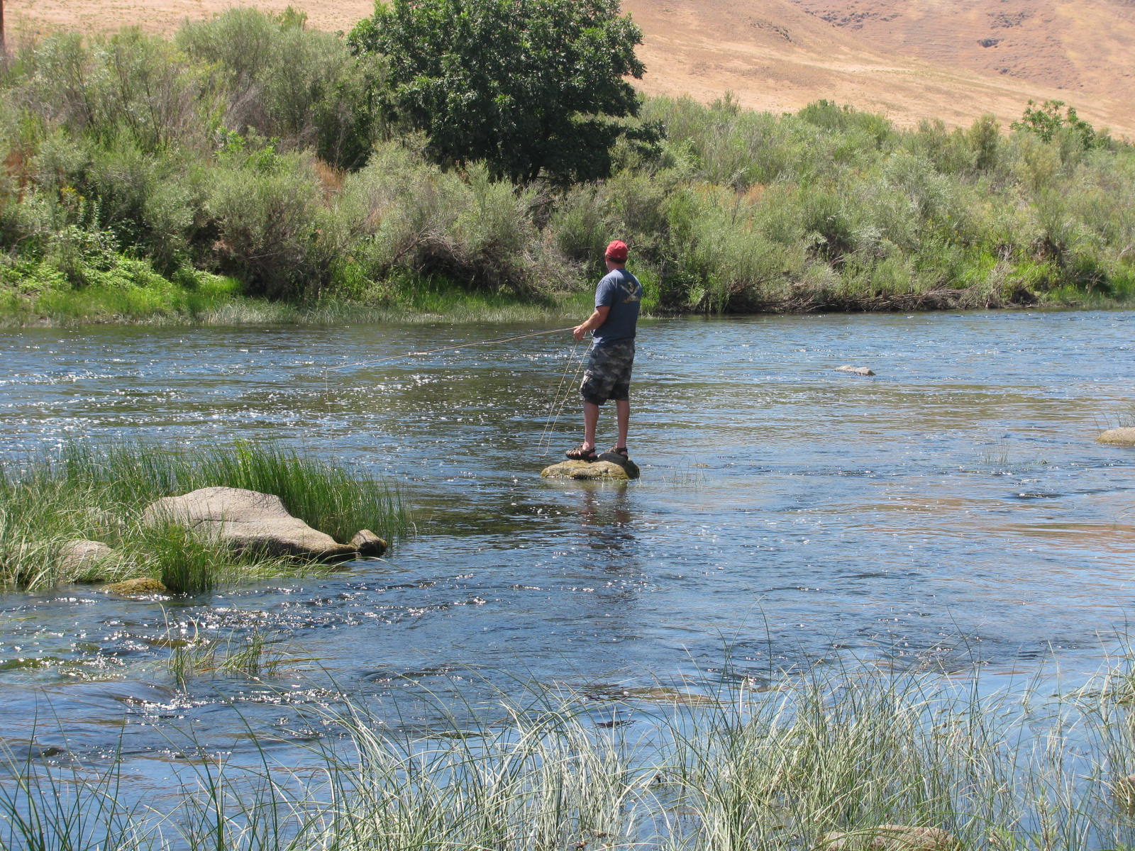 Man standing on rock in river fishing for bass