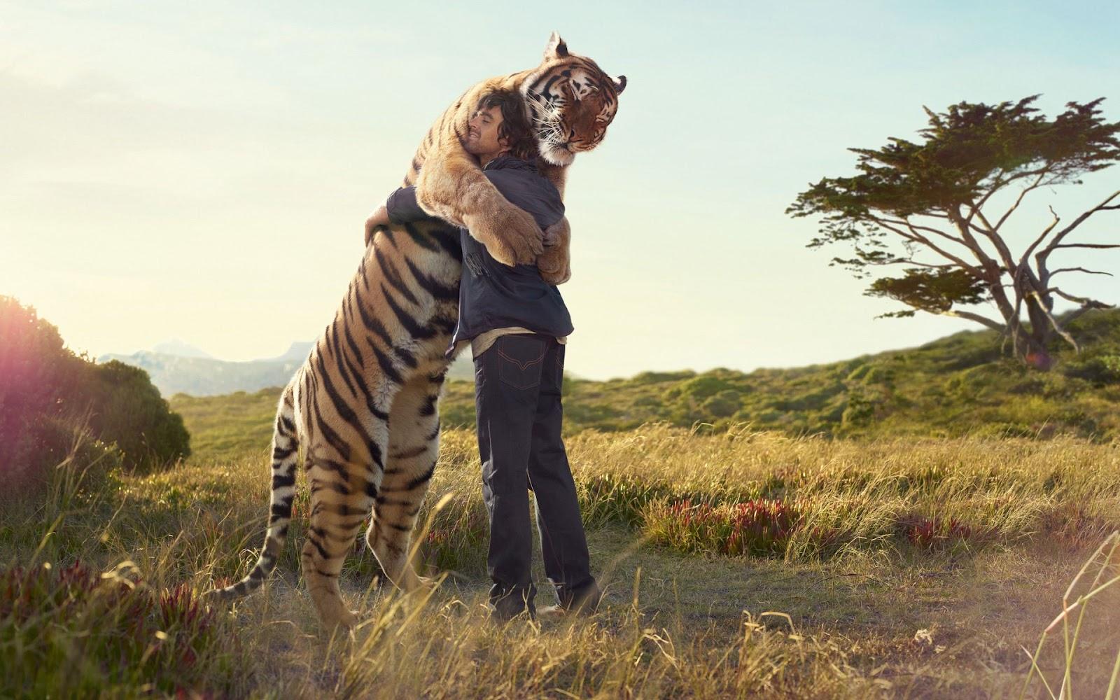 [Image: tiger+hug.jpg]