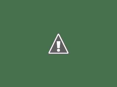 El desalojo de los bosquimanos