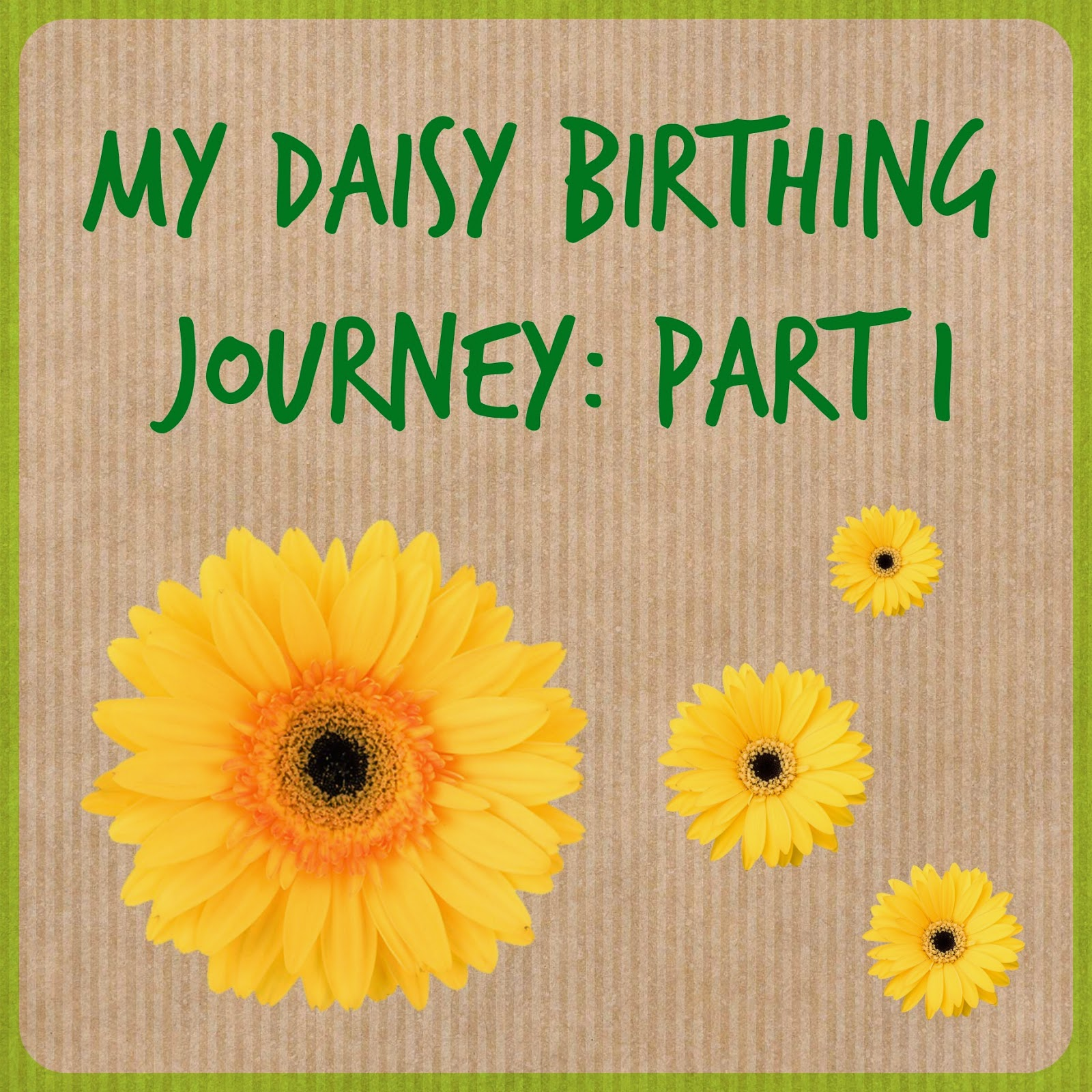 My daisy birthing journey part 1 tin box traveller what is daisy birthing dhlflorist Images