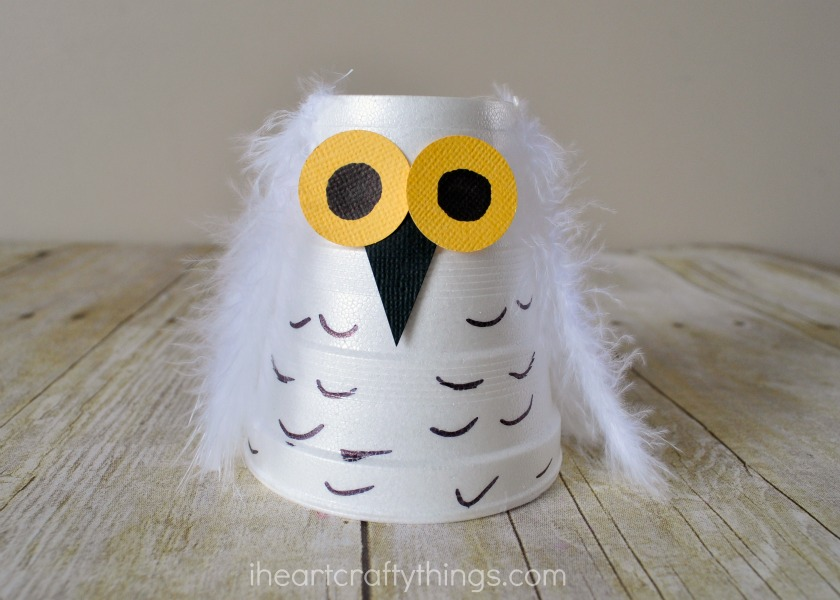 Colorful Paper Cup Parrot Craft
