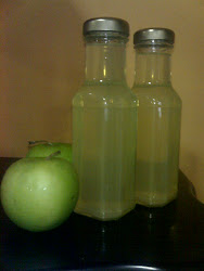 Cuka Buah/Fruits Vinegar