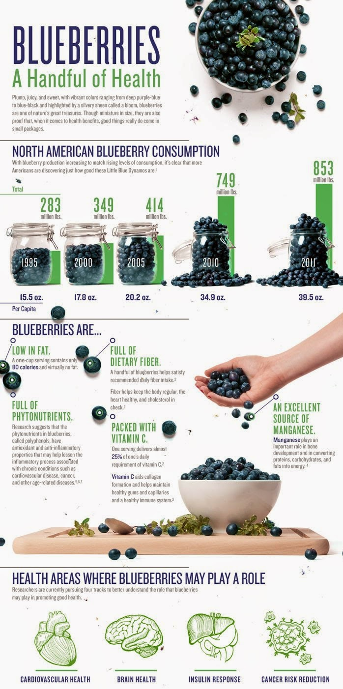 Amazing Benefits of BlueBerries