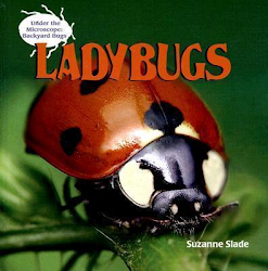 Ladybugs (Under the microscope: backyard bugs) by  Suzanne Slade