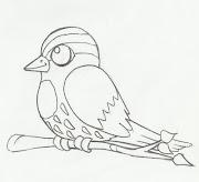 Desenho de pássaro para colorir. Desenho de pássaro para colorir.