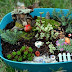 Backyard Patch Herbal Blog: Celebrate in Miniature - Make a Fairy ...