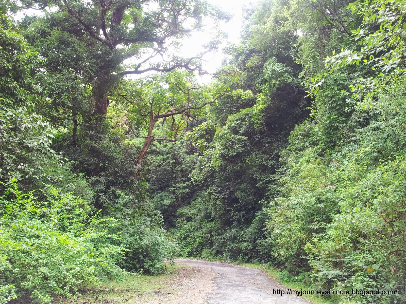 Bisle Ghat