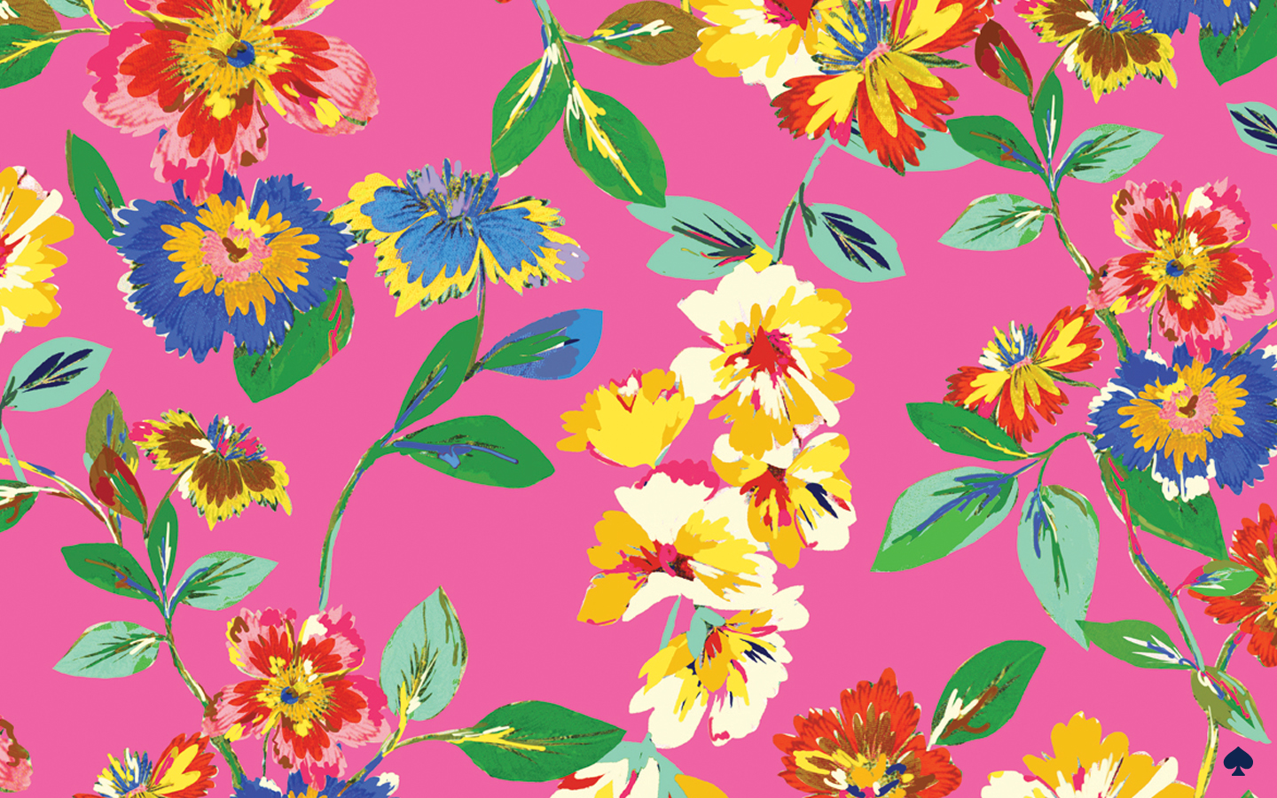 Top CanadianPrep: Kate Spade Wallpaper NP68