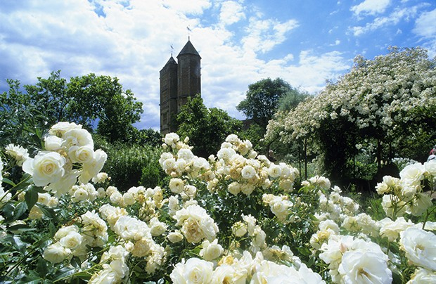 Pleasant Ciao Domenica A Garden Book Club With Fascinating The Rose Garden At Sissinghurst Castle With Extraordinary Bamboo Gardens Menu Also How To Plant Okra Seeds In A Garden In Addition Highfields Garden Centre And Ebay Garden Sheds As Well As Scorton Garden Centre Additionally Ferring Garden Centre From Ciaodomenicablogspotcom With   Fascinating Ciao Domenica A Garden Book Club With Extraordinary The Rose Garden At Sissinghurst Castle And Pleasant Bamboo Gardens Menu Also How To Plant Okra Seeds In A Garden In Addition Highfields Garden Centre From Ciaodomenicablogspotcom