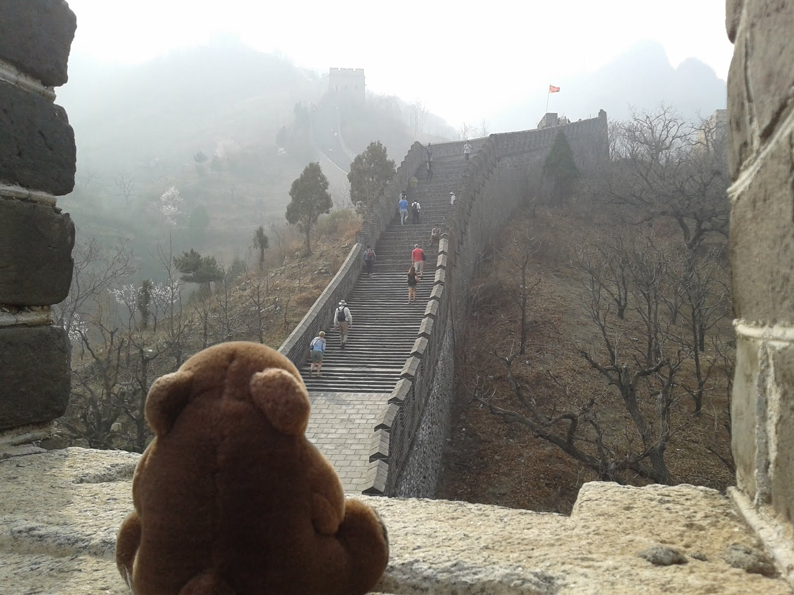 Teddy in Huangyaguan Great Wall, China