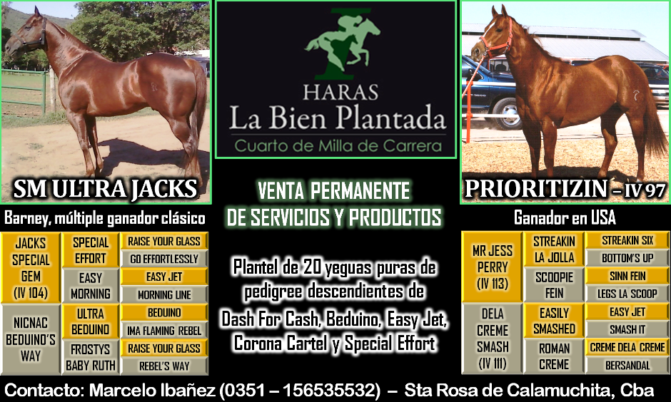 HARAS LA BIEN PLANTADA