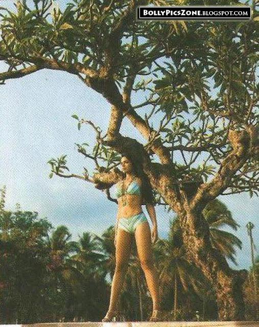 Sameera Reddy Hot Bikini Pic - Sameera Reddy Hot Bikini Pics