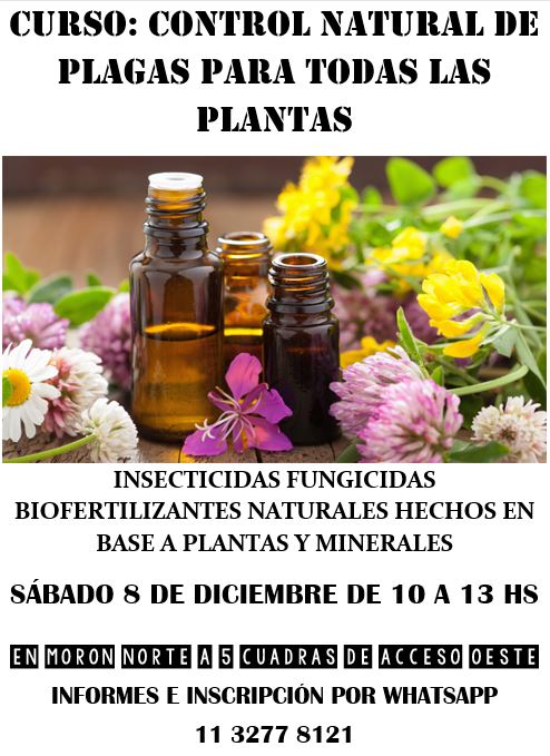 SÁBADO 8 DE DICIEMBRE: CONTROL NATURAL DE PLAGAS PARA TODAS TUS PLANTAS