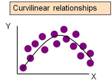 curvilinear relationship between variables