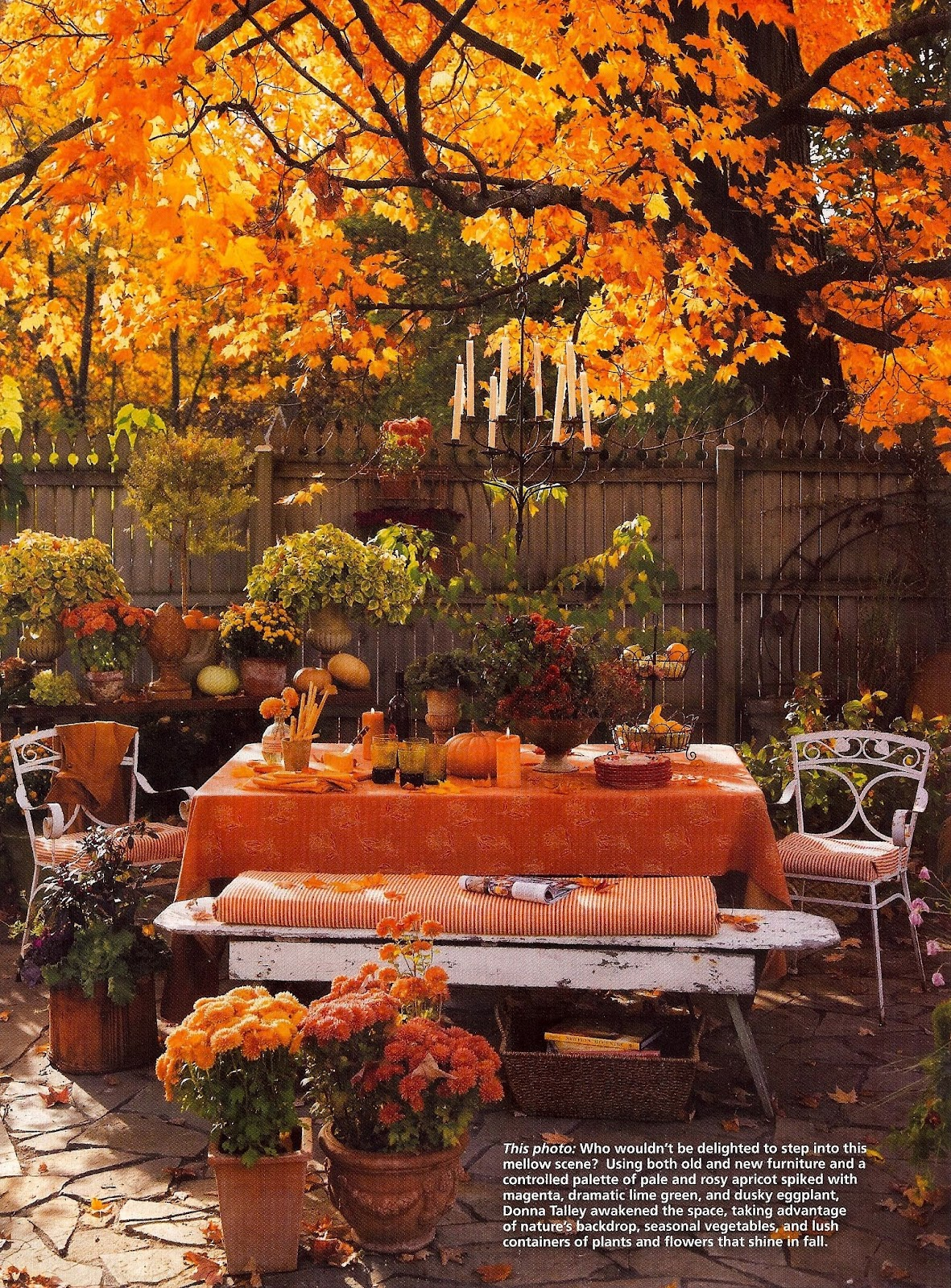 Outdoor autumn theme table thanksgiving ideas juxtapost Fall decorating ideas for dinner party