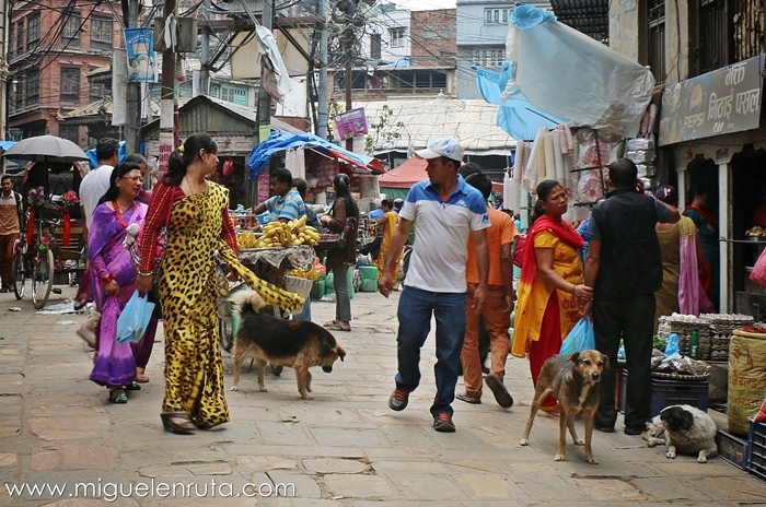 Shari-sari-Katmandu