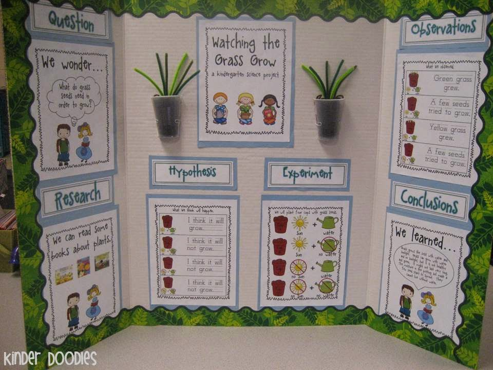 science fair projects for kindergarten K-2nd grade science projects and make sure you try some of our 50 free demo lessons available from our core science curriculum kindergarten science projects.
