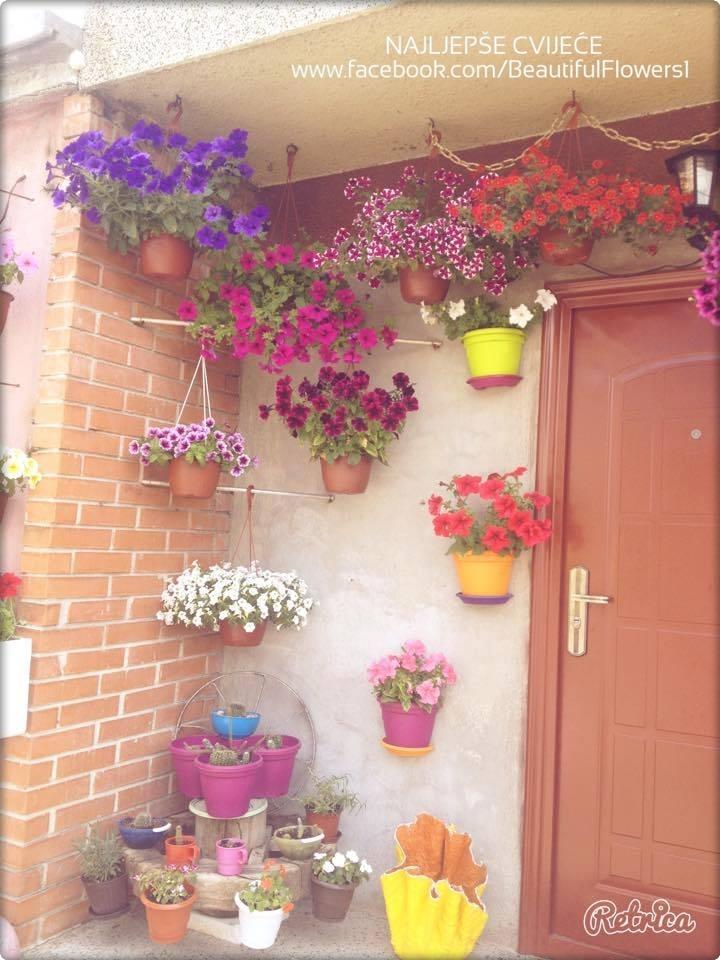 15 Fotografija prekrasnog Vrta koje će vas oduševiti - Moj Vrt Cvijeća