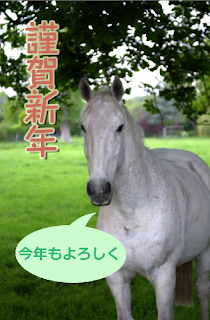 photoshop elements 合成画像